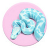 800-thumb_blue_snake
