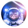 800-thumb_catstronaut